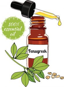 Fenugreek oil drops