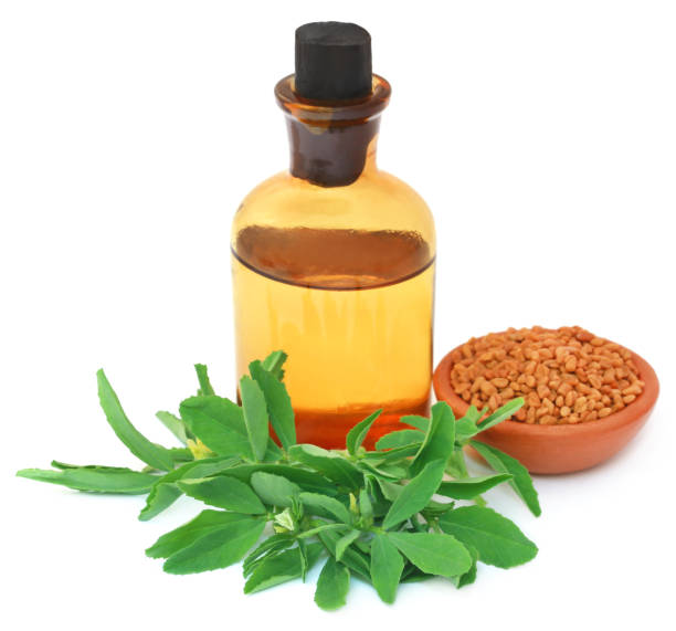 Fenugreek leavesm oil and seeds