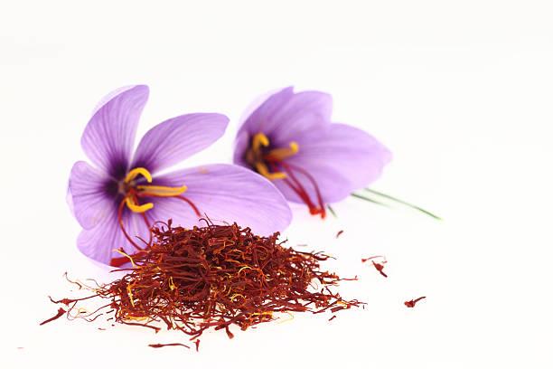 Saffron flower and stigmas